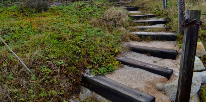 Steps - Asilomar, Pacific Grove, CA